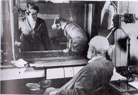 パブロフの犬実験